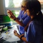 Margaret in LFHC lab
